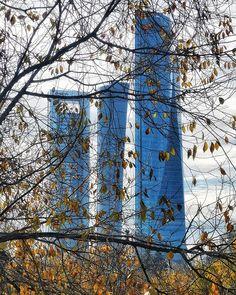 Cuatro torres... Cuatro? . . . . . . .. . . #places #lugares#madrid #autumn#otoño #urbanscenes #escenasurbanas #HuaweiMate20Pro @huaweimobileesp #zoom3x #color #tree #arbol Madrid, Instagram, Color, Towers, Places, Colour, Colors