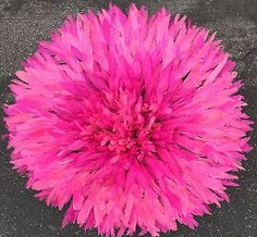 """#24""""african traditional/pink #feather head #dress/ juju hat,  View more on the LINK: http://www.zeppy.io/product/gb/2/252113236254/"""