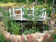 Puente sobre el estanque de atrás