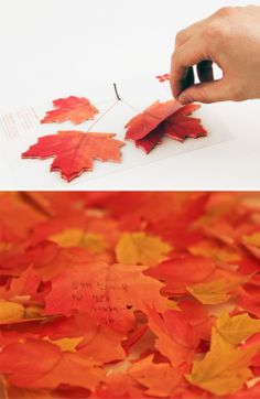 Leaf-It Maple Memo Pad from Appree