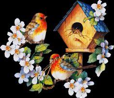 Animated Birds in Spring spring flowers birds animated season happy spring spring greeting