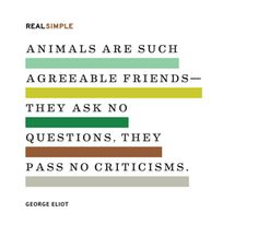 Animals are such agreeable friends -- they ask no questions; they pass no criticisms #animal #quote