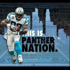 Carolina Panthers ~ Charlotte, North Carolina is Panther Nation!