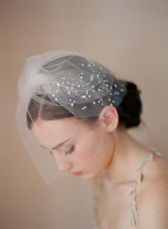 Twigs & Honey 2012 Diamante Veil