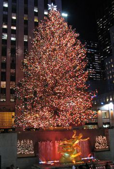 There is something so magical about NYC during Christmas!  LOOOOOVE it!