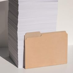 Leather Manila Folder | Graf Lantz