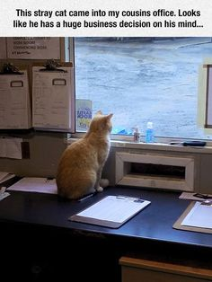 When Is His Boat Arriving?