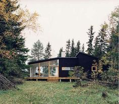 modern home in the woods
