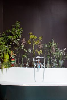 Black bathroom walls, black painted tub and greenery in small vases against wall. Gorgeous color palette.