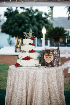 Christmas Holiday Wedding in the Bride's childhood backyard, rustic wedding cake - Orlando, Florida