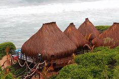 """""""A Whale Of A Time"""" Click on pic to see more of Zona Braza Beach Lodge. All our rooms are built to ensure cool natural surroundings, finished off with reeds around the rooms for that rustic natural look. Natural Looks, Whale, Rooms, It Is Finished, Rustic, Cool Stuff, House Styles, Beach, Bedrooms"""