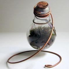 Light bulb terrarium