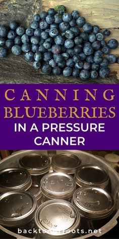 Easy Canning, Canning Tips, Home Canning, Canning Pressure Cooker, Pressure Canning Recipes, Pressure Cooking, Canning Process, Canned Blueberries, Canning Granny