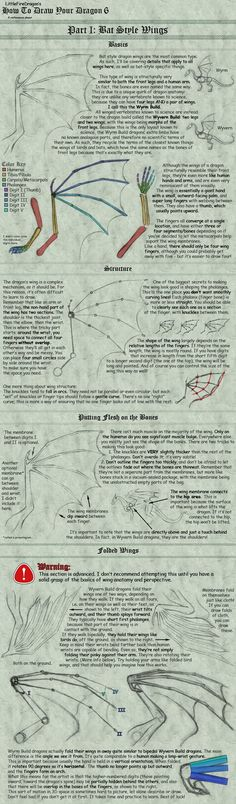 How to Draw Your Dragon 6-1 by LittleFireDragon on DeviantArt
