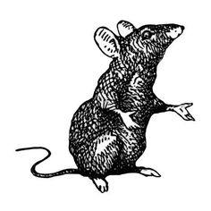 Little mouse wall sticker