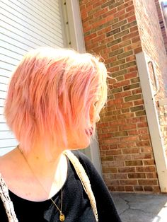 Ion Rose Hair Color Review