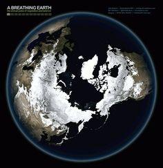 Changements de saisons de la Terre vue de l'espace. John Nelson a eu l'idée d'utiliser les images révolutionnaires de la NASA réalisées dans le cadre Visible Earth. La NASA est parvenue à photographier la Terre et à éliminer les nuages! John Nelson s'est servi de ces photos pour créer deux animations où nous pouvons suivre la Terre sur une année complète et donc au fil des quatre saisons. John Nelson a baptisé ce projet The Breathing Earth (La respiration de la Terre).