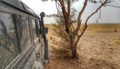 #ani4x4 sahel hammada land Rover Defender #heat Morocco #Marruecos Sahara #desert