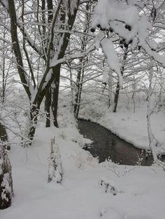 Winter in Wiesentheid, Germany Febr.2013