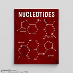 DNA Art DNA Poster Nucleotides Science Art Biology Biochemistry Office Decor Science Molecule Gifts for Teachers Gifts Chemical Structures