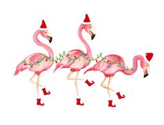 flamingo christmas | Shorely Chic: FLAMINGO FRIDAY!