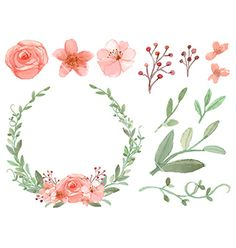 Set of flowers and leaves vector - by MayPS on VectorStock®