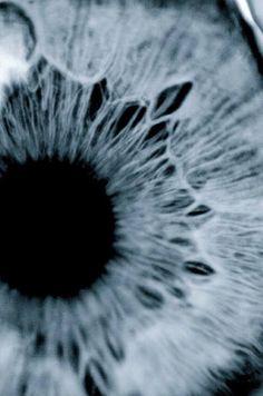 eye pupil