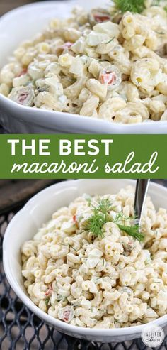 for pasta salad recipes salad recipes salad recipes salad recipes healthy salad recipes egg salad recipes salad recipes noodle salad recipes Maccaroni Salad, Tuna Macaroni Salad, Healthy Macaroni Salad, Summer Macaroni Salad, Mexican Macaroni Salad, Tuna Salad, Caesar Salad, Egg Salad, Cucumber Salad
