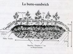 "La ""butte sandwich"" - Source : Robert Morez."