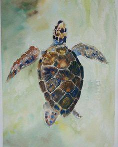 O próximo estudo a tartaruga  Esse usei mais os pincéis pra sumi-e e deixei focos de cores primárias. Sempre gostei muito desse tipo de detalhe. . . . . .  #art #artistworkout #illustration #vsco #instaartist #artoftheday #estudo #creative #artwork #watercolor #aquarela #milhoproperu #deusodeiaoscovardes