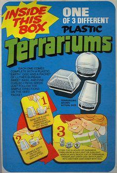 Post Cereal Terrariums - Free inside your Super Sugar Crisp in 1975