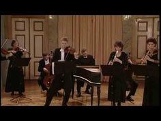 Bach: Brandenburg Concerto No. 3 in G major, BWV 1048 (Freiburger Barockorchester) - YouTube