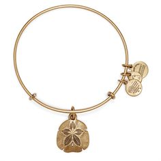 Sand Dollar Charm Bangle ($28) ❤ liked on Polyvore featuring jewelry, bracelets, sand jewelry, bracelet bangle, alex and ani bracelet, bangle charm bracelet and charm bracelet bangle
