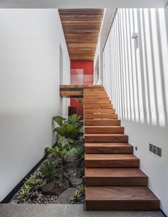 Small garden underneath the stairs by Almazan y Arquitectos Asociados Balcony Design, Garden Design, Garden Stairs, Indoor Plant Pots, Patio Heater, Interior Garden, Under Stairs, Cool House Designs, Backyard
