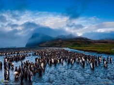 Go To The World...: National Geographic Landscape Wallpapers1600 x 1200 | 162 KB | blog.chirag3065world.in