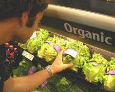Organic Food @  http://goo.gl/V0uyCX