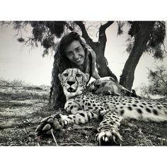 My St.Valentine's present!!  #cheetah#love#animals#loveanimals#conservation#photography#instagood#saintvalentine