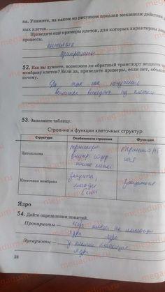 Страница 28 - Биология 9 класс рабочая тетрадь Пасечник, Швецов