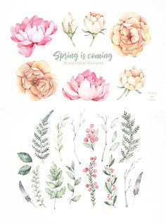 Spring is coming set. with watercolour flowers.