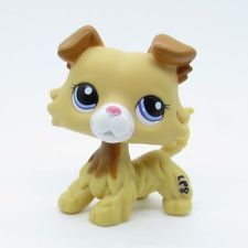 Littlest Pet Shop Collie Puppy Dog Cream Yellow Rare LPS Animal 2452 Hasbro