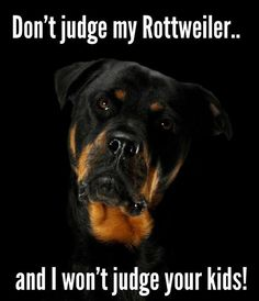Don't judge my Rottweiler and I won't judge your kids, but my dogs are probably better behaved