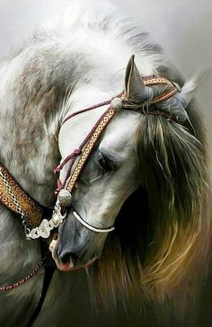 Animals Discover Unicorn in the Forest Cute Horses, Pretty Horses, Horse Love, Most Beautiful Horses, Animals Beautiful, Beautiful Horse Pictures, Horse Artwork, Horse Paintings, Andalusian Horse