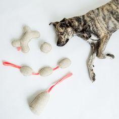 Spiel mit mir! 🐶  Witzige Spielschlange oder lustiger Spielkegel, machen Quietschlaute. Aus rein organischen Materialien.  #dog #instadog #hundeliebe #dogstagram #doglover #dogphotography #puppy #hundefotografie #dogs #hundträning Kegel, Dog Toys, Felt, Puppies, Christmas Ornaments, Holiday Decor, Dogs, Instagram Posts, Cute