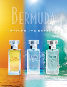 Capture the Essence of the beauty of #Bermuda! Favourites with #locals and #tourists alike; the #Bermuda #Blue, Bermuda Breeze and Bermuda Heat #fragrances. The ever popular #eaudetoilettes are available in two sizes, 50 ml for $32.00 and 100 ml for $40.00. Purchase in-store or online. Visit www.gibbons.bm