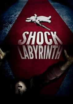 """The Shock Labyrinth: Grudge series director Takashi Shimizu sets his latest horror outing in a Mount Fuji amusement park that bears a striking resemblance to Japan's real Fuji-Q High Land and """"the world's longest horror house walk-through"""" located there."""