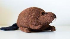 Free Knitting Pattern Beaver