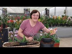 Youtube, How To Replant Orchids, Nursery Trees, Gardening, Log Projects, Women, Hair, Plants, Needlepoint
