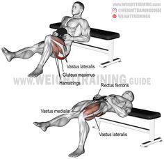 Weighted one-leg hip thrust. A unilateral isolation exercise. Target muscle: Gluteus Maximus. Synergists: Quadriceps (Vastus Lateralis, Vastus Medialis, Vastus Intermedius, and Rectus Femoris). Dynamic stabilizers: Hamstrings (Biceps Femoris, Semimembrano