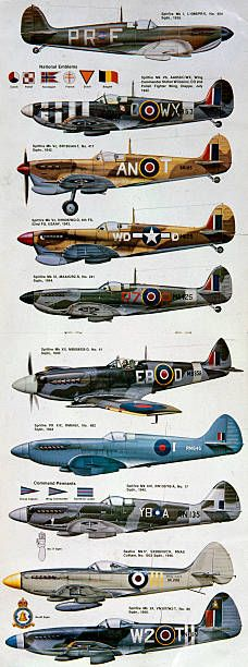 Magazine centrefold showing different versions of the Spitfire painted in the markings of various squadrons and air forces. Profiles of this type provide invaluable reference for researchers and aircraft modellers. Designed by Reginald Mitchell and powered by a Rolls-Royce Merlin engine, the Spitfire was integral to Britain's front-line air defence during World War II, and together with the Hawker Hurricane fighter played a key role in the Battle of Britain of 1940, the first check on German…
