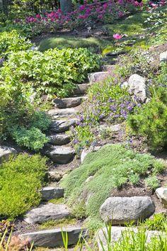 Stone Landscaping, Hillside Landscaping, Landscaping With Rocks, Landscaping Ideas, Outdoor Landscaping, Hillside Garden, Sloped Garden, Garden Paths, Diy Garden